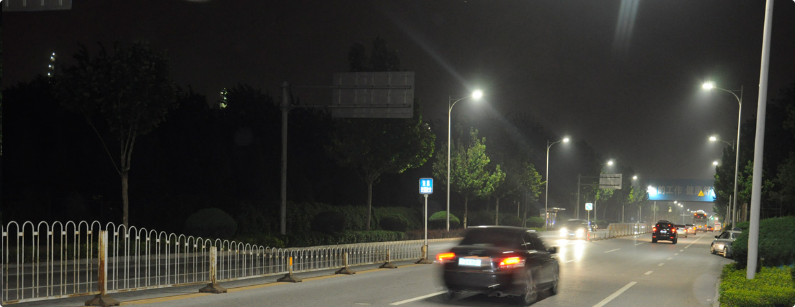Dolphin led street light